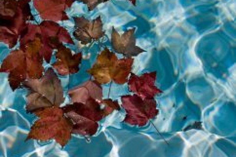 Remember your Spa this Fall